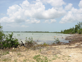 Land for Sale at Beach Front Acreage Mastic Point, Andros, Bahamas