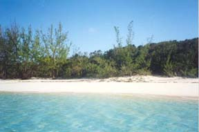 Additional photo for property listing at Beachfront Acreage Nassau New Providence And Vicinity