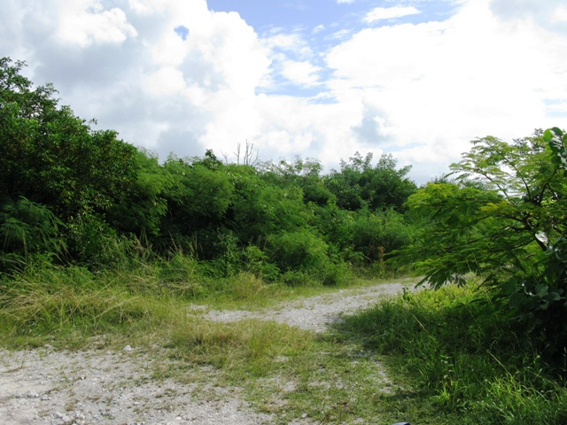Land for Sale at Walk to Surfer's Beach Eleuthera, Bahamas