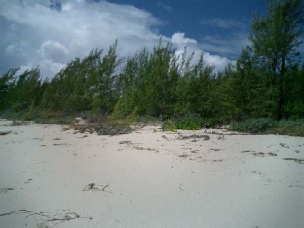 Land for Sale at Beachfront Lot at Old Kerr's (MLS18634) Old Kerrs, South Abaco, Abaco Bahamas