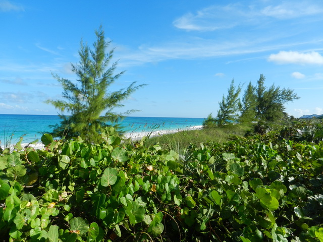 Land for Sale at High residential lot with views Greenwood Estates, Cat Island, Bahamas