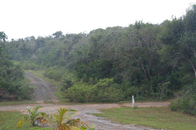 Land for Sale at Two Long Beach Lots Long Beach, Abaco, Bahamas
