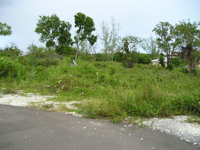 Land for Sale at Vacant Multi-Family Acreage Nassau And Paradise Island, Bahamas