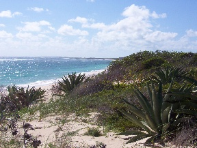Land for Sale at Atlantic Cove Pristine Beachfront Lots Tarpum Bay, Eleuthera, Bahamas