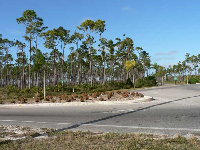 Terrain / Lots pour l Vente à Prime Commercial Industrial Tract Grand Bahama And Vicinity