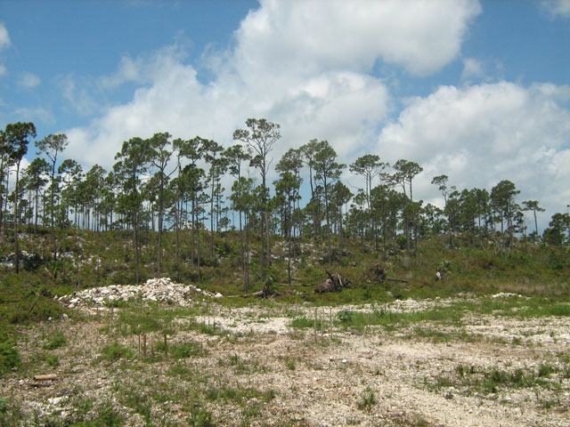 Land for Sale at Large Hilltop Lot 10 In Great Cistern Abaco, Bahamas