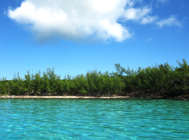 Land for Sale at Gorgeous 'South Side' Acreage, Kemp's Bay, Savannah Sound Savannah Sound, Eleuthera, Bahamas