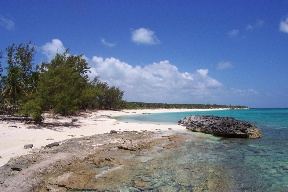 Land / Parzelle für Verkauf beim Rose Island Beach and Harbour Club Lot Nassau New Providence And Vicinity