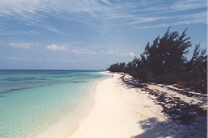 Additional photo for property listing at Beachfront Land Parcel Eleuthera, Багамские Острова