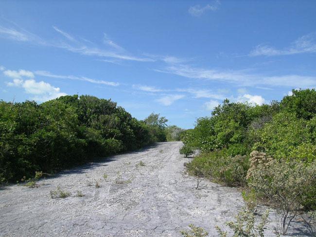 Land for Sale at Affordable Stella Maris Lot With Potential Sea Views Stella Maris, Long Island, Bahamas