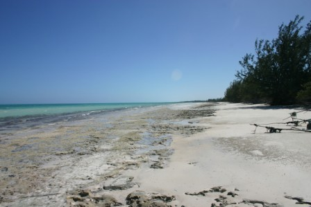 Additional photo for property listing at Kemps Bay Waterfront Property Andros, Bahamas