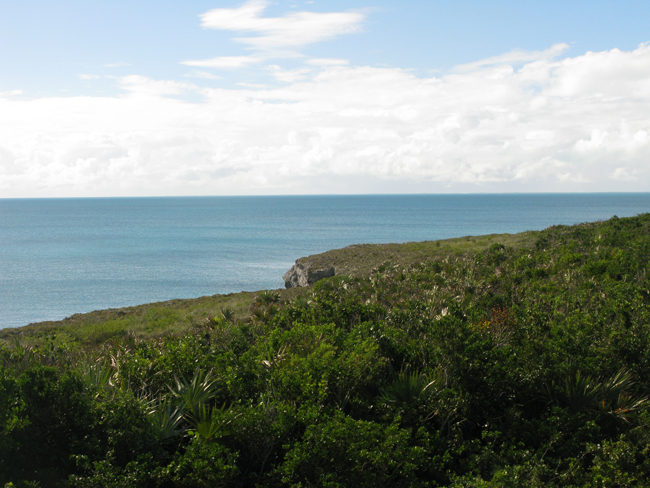 Land / Lot voor Verkoop een t 44 Acres of Gorgeous Waterfront!!! Great Investment Opportunity!! Eleuthera, Bahama Eilanden
