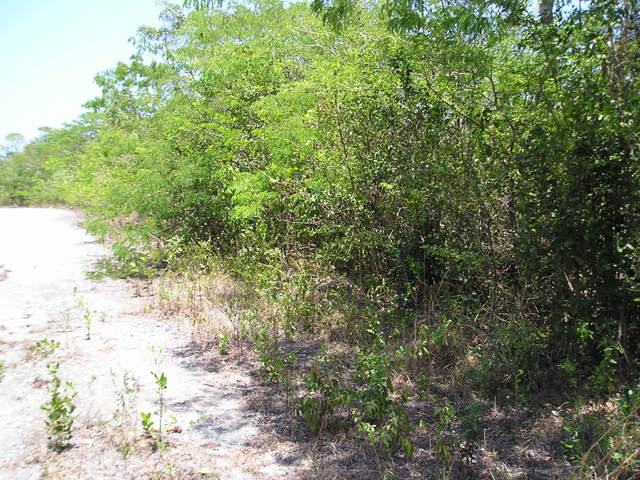 Land for Sale at Bahama Sound Bahama Sound, Exuma, Bahamas