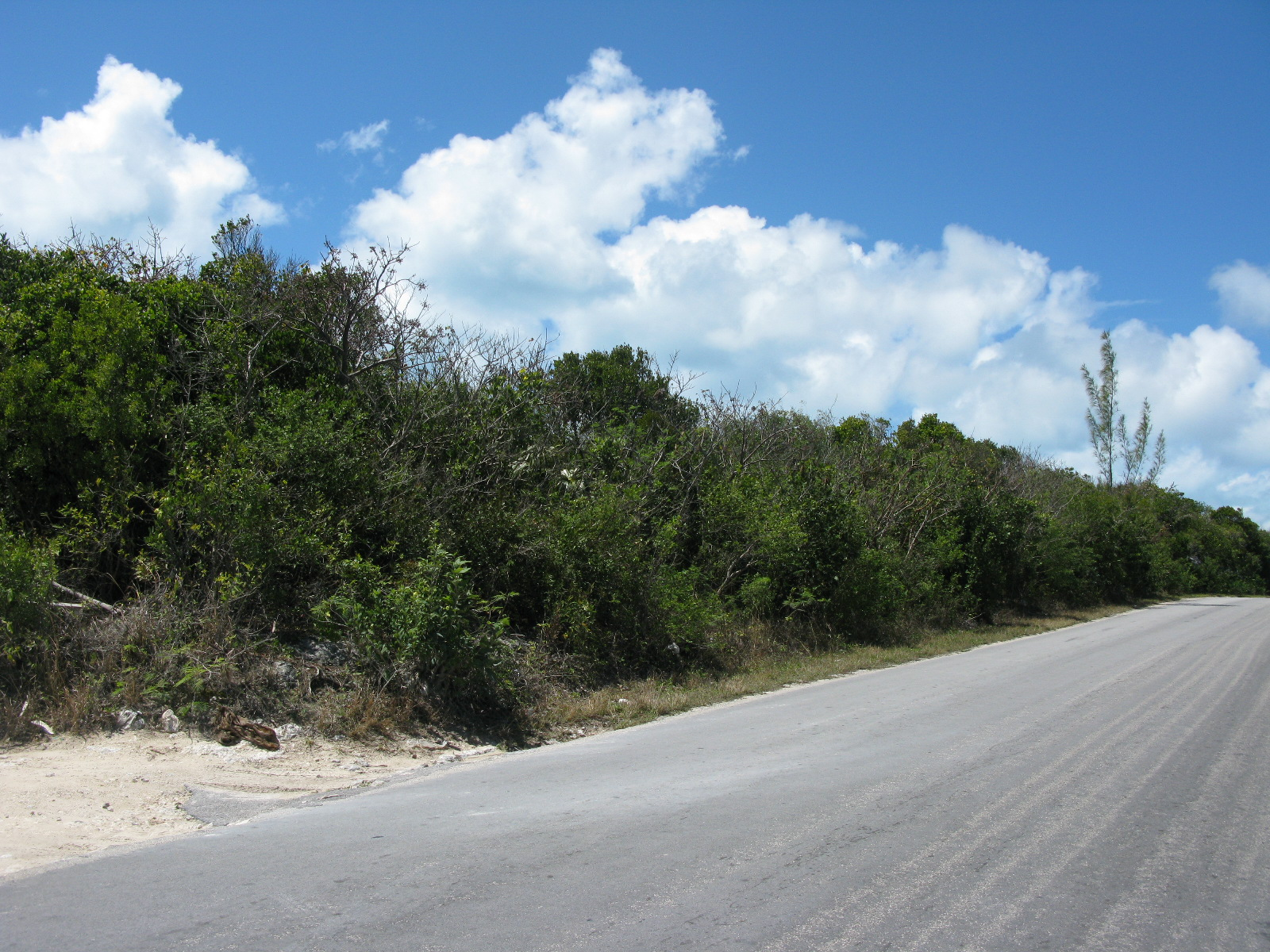 Land for Sale at REDUCED!!! ~ Elevated Corner Lot With Views Of The Caribbean Eleuthera, Bahamas