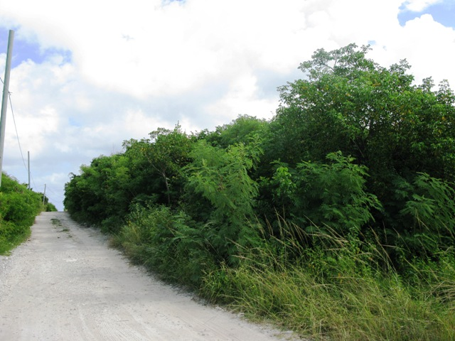 Land for Sale at Lot with utilities near Surfer's Beach / MLS32473 Eleuthera, Bahamas