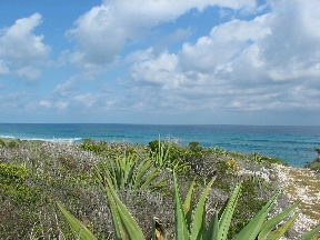 Land for Sale at 24 Acre Development Tract Gregory Town, Eleuthera, Bahamas