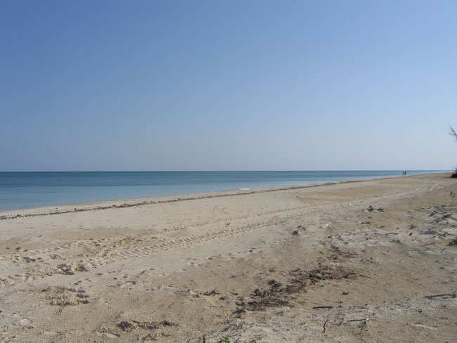 Additional photo for property listing at Great Beachfront Property Μπαχαμεσ