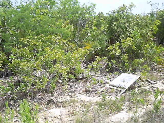 Land for Sale at Serenity Long Island, Bahamas