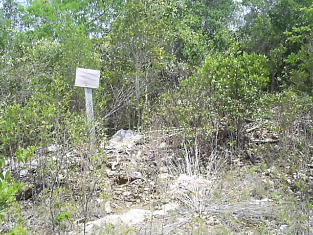 Land for Sale at Freedom Long Island, Bahamas