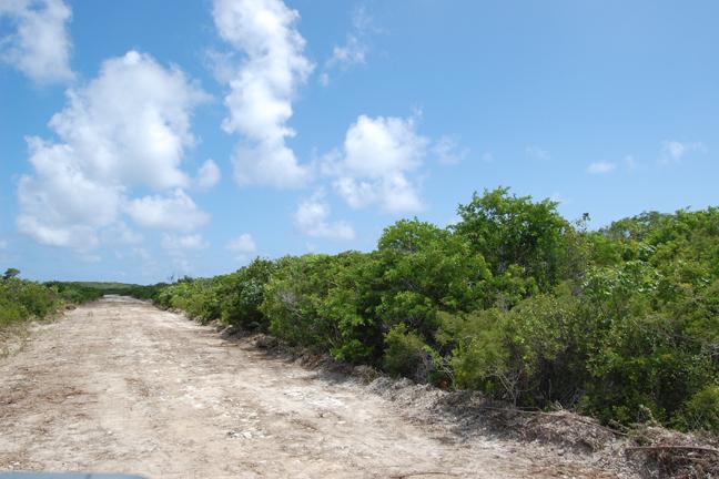 Land for Sale at Lot in San Salvador Columbus Landings, San Salvador, Bahamas