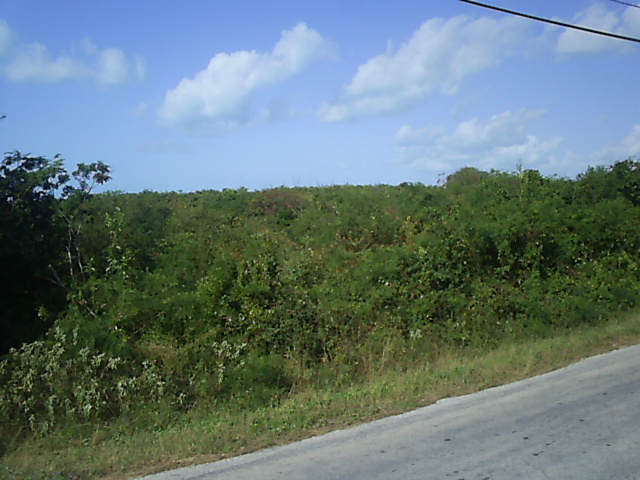 Land for Sale at An Investment Oppoprtunity Long Island, Bahamas