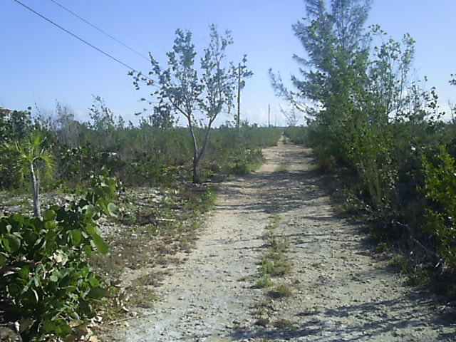 Land for Sale at Great Investment Long Island, Bahamas