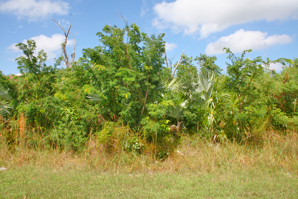 Land for Sale at Oversized Lot on Point Lookout Drive! Bahamia, Grand Bahama, Bahamas