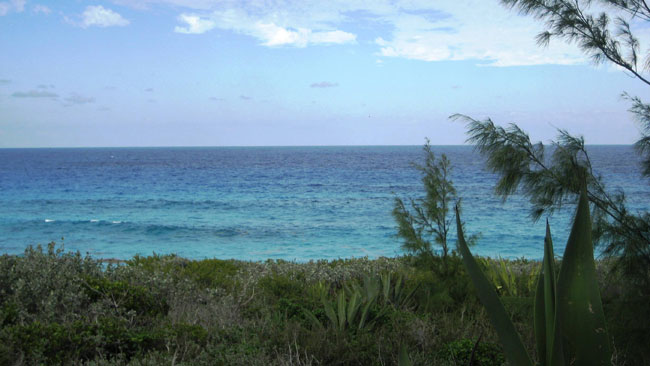 Land for Sale at Great Oceanfront Lot In Rainbow Bay Rainbow Bay, Eleuthera, Bahamas