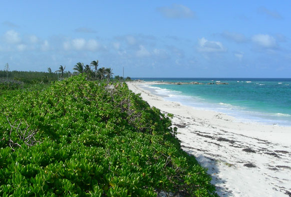 Land for Sale at Island lot in Beautiful Gilpin Point, South Abaco (MLS18708) Abaco, Bahamas
