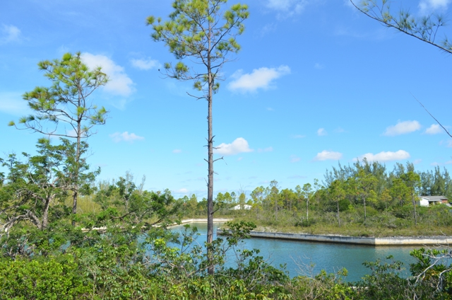 Land for Sale at Waterfront Property Derby, Grand Bahama, Bahamas