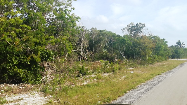 Land for Sale at Great Opportunity for Highway Lot Rock Sound, Eleuthera, Bahamas