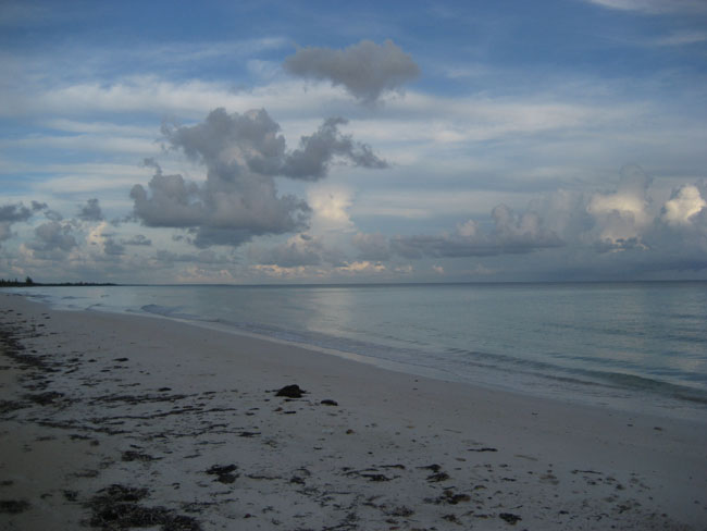 Terre / Lot de terrain pour l Vente à 32 acres of beautiful beachfront just west of Pelican Point Grand Bahama And Vicinity