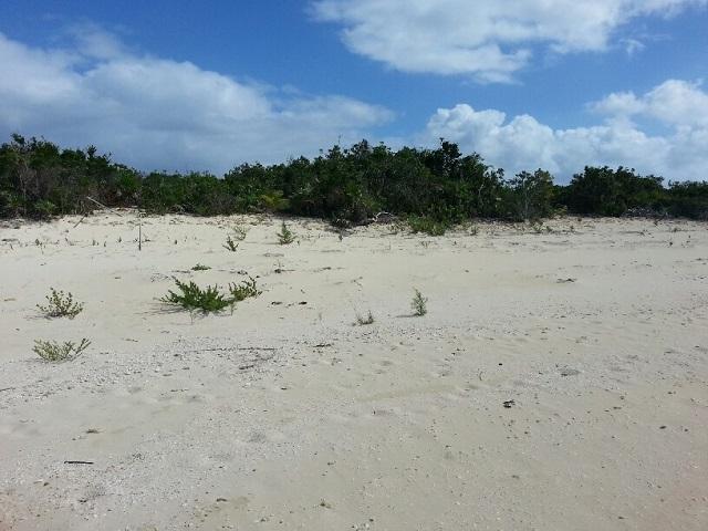 Land for Sale at Acreage Long Island, Bahamas