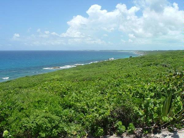 Land for Sale at Ten acres of vacant land in Long Island . . . Great for development! Long Island, Bahamas