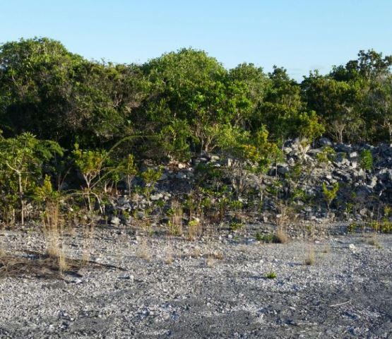 Land for Sale at Hilltop Residential Lot Columbus Landings, San Salvador, Bahamas
