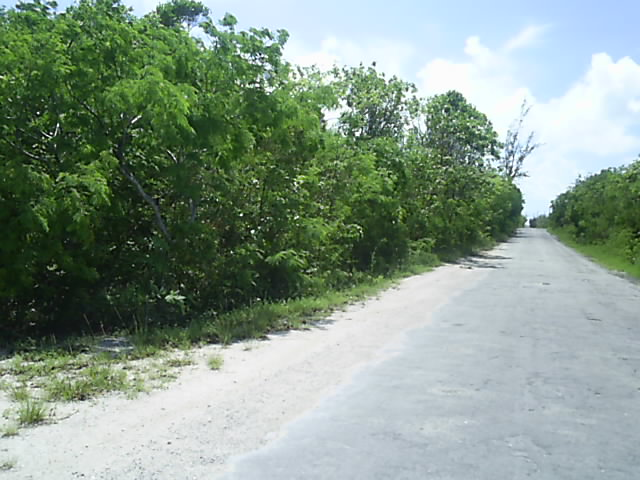 Land for Sale at Large Elevated Stella Maris Lot Stella Maris, Long Island, Bahamas
