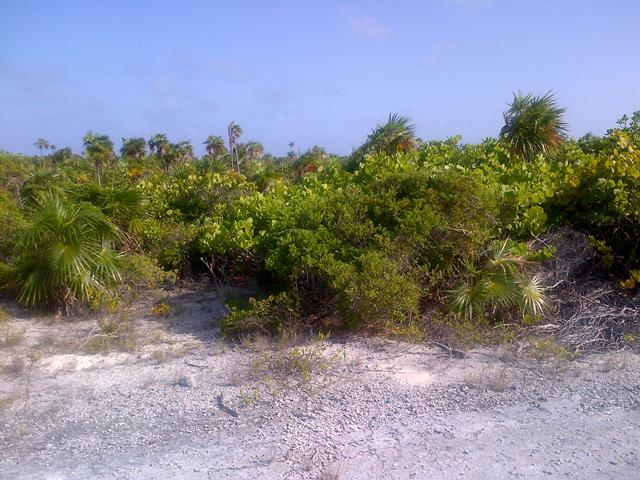 Land for Sale at Snow Bay Duplex Lot Columbus Landings, San Salvador, Bahamas