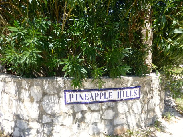 Land for Sale at Fabulous Estate Lot B-3, Pineapple Hills in Gregory Town, Eleuthera! Gregory Town, Eleuthera, Bahamas