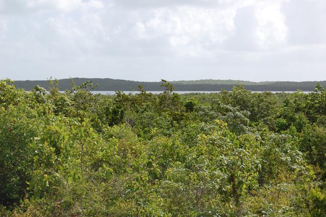 Land for Sale at Vacant land in San Salvador Columbus Landings, San Salvador, Bahamas