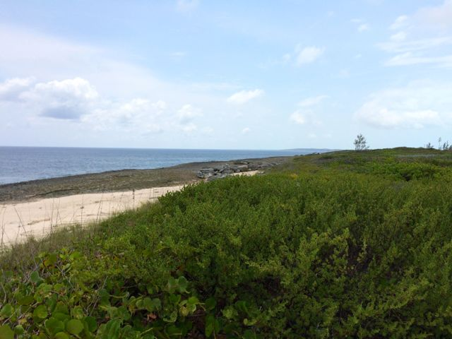 Land for Sale at An Incredible Ocean View Every Day in Whale Point! Lot 13 Whale Point, Eleuthera, Bahamas