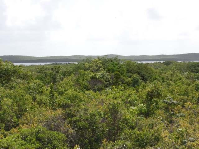 Land for Sale at Beautiful San Salvador Lot San Salvador, Bahamas