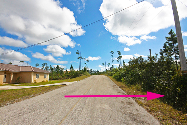 Land for Sale at Affordable Single Family Corner Lot in Beautifully Developing Neighborhood ! Grand Bahama, Bahamas