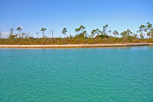 Land for Sale at Priced to Sell!! Outstanding water views from estate size canal property in Coral Bay! Coral Bay, Grand Bahama, Bahamas