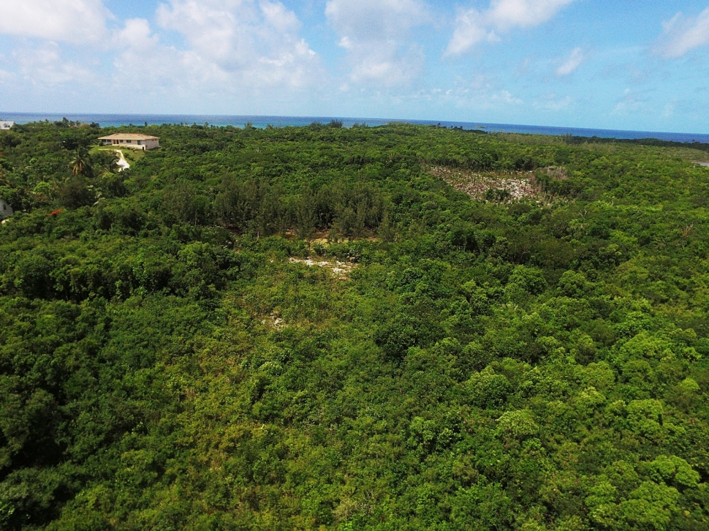 Land for Sale at Exceptional Value Residential Lots Palmetto Point MLS 27613 Palmetto Point, Eleuthera, Bahamas