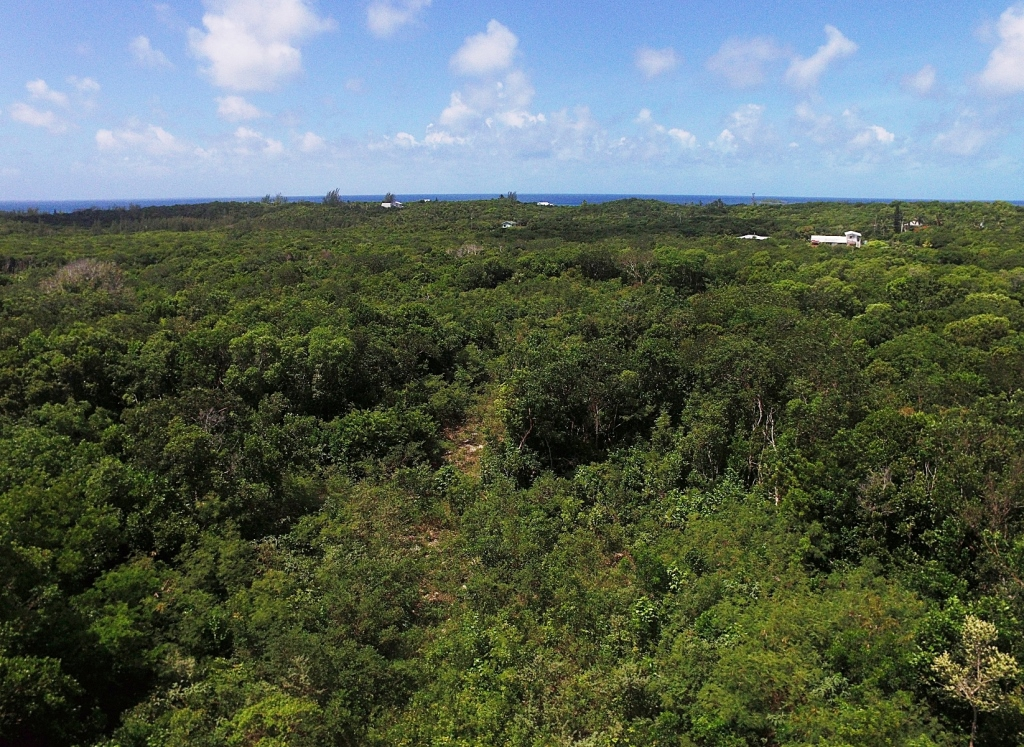 Land for Sale at Exceptional Value Residential Lots Palmetto Point MLS 27614 Palmetto Point, Eleuthera, Bahamas