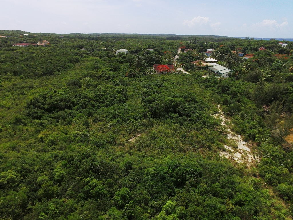 Land for Sale at Exceptional Value Residential Lots Palmetto Point MLS 27615 Palmetto Point, Eleuthera, Bahamas