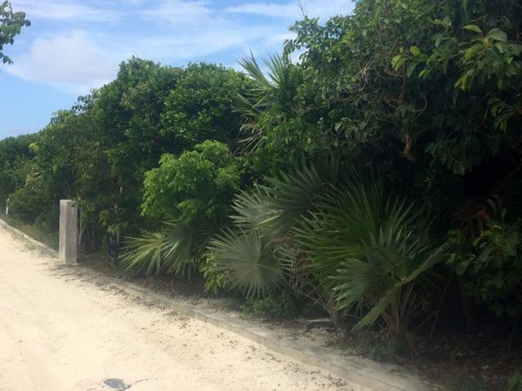 Land for Sale at Ocean Ridge Estates Lot Guana Cay, Abaco, Bahamas