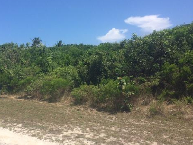 Land for Sale at Long Beach Lot #317 - MLS 27304 Long Beach, Abaco, Bahamas