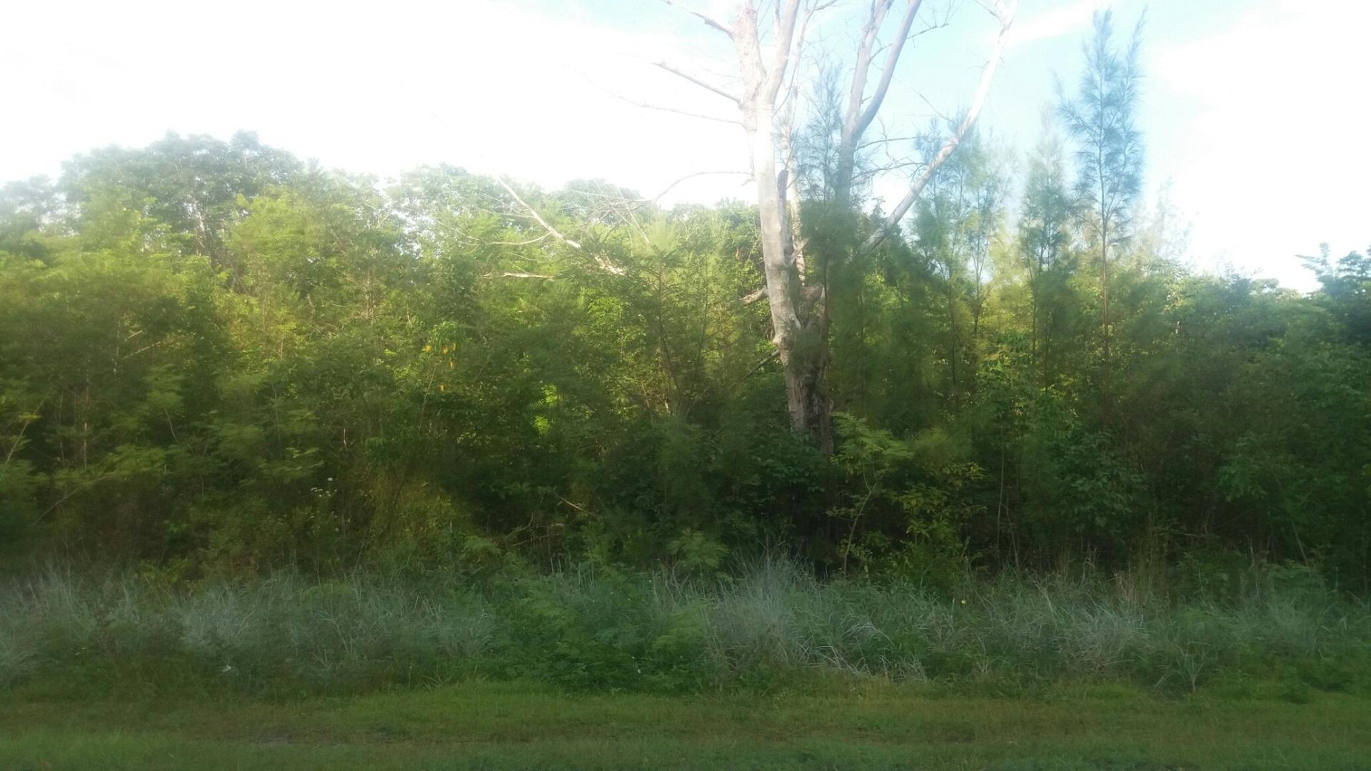 Land for Sale at Great Deal in Emerald Bay - MLS 27802 Emerald Bay, Grand Bahama, Bahamas