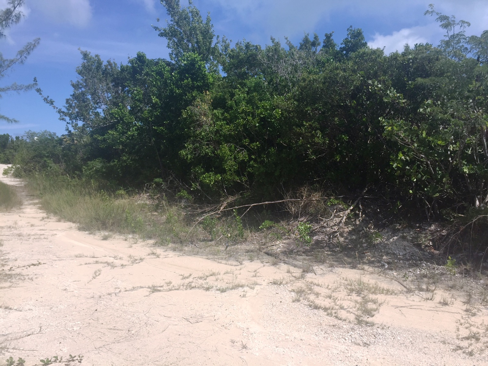 Land for Sale at Vacant Building Lot across from Public Waterfront Access Bahama Sound, Exuma, Bahamas